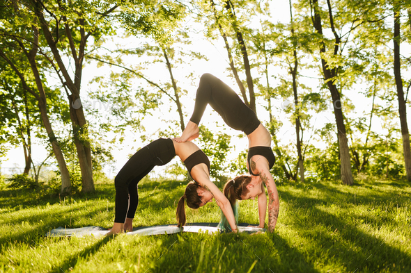 223444a71598 Photo of two pretty ladies standing in bridge poses while training yoga  together outdoors