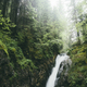 waterfall and lush vegetation in green misty landscape - PhotoDune Item for Sale