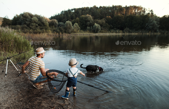 A mature father with a small toddler son and dog outdoors fishing by a lake. - Stock Photo - Images