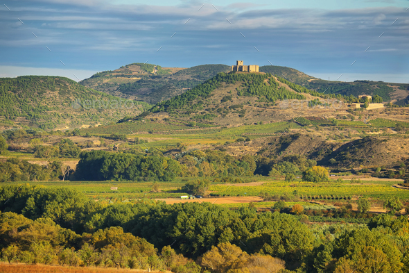 Vineyard in La Rioja, the largest wine producing region in Spain - Stock Photo - Images