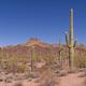 American Desert Landscape - PhotoDune Item for Sale