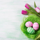 Easter green pink eggs in the nest and tulips, copy space. - PhotoDune Item for Sale