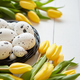 Beautiful yellow tulips with dotted quail and chicken eggs in nest on white - PhotoDune Item for Sale