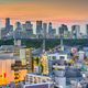 Tokyo, Japan city skyline - PhotoDune Item for Sale