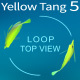 Yellow Tang 6 - VideoHive Item for Sale