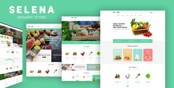 Exceptional Selena - Organic Food Store Theme for WooCommerce WordPress