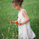little girl with poppy in summer field - PhotoDune Item for Sale