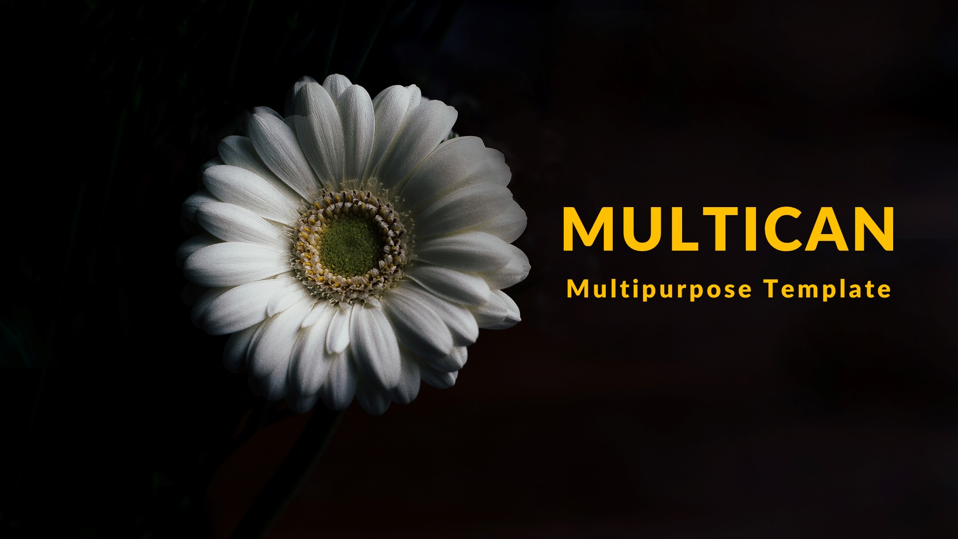 Multican Creative Keynote Template