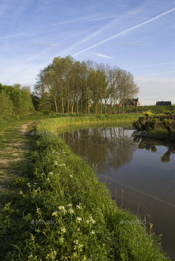 Nature reserve Avelingen - Stock Photo - Images
