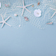 Sea shells on blue background - PhotoDune Item for Sale