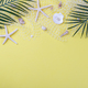 Sea shells on yellow background - PhotoDune Item for Sale