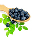 Blueberries in a spoon with a leaf - PhotoDune Item for Sale