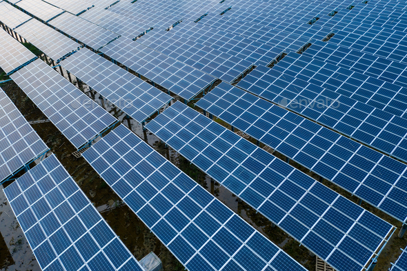 the solar panels - Stock Photo - Images
