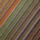 Aerial view Tulip field - PhotoDune Item for Sale