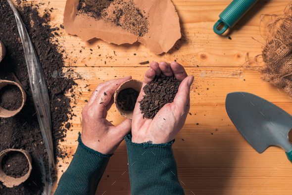 Gardener filling biodegradable soil pot container - Stock Photo - Images