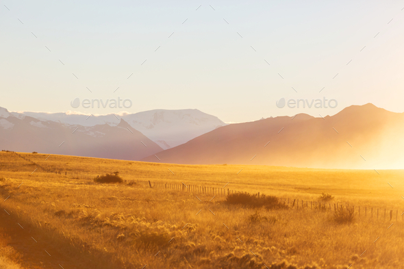 Field in Argentina - Stock Photo - Images