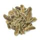 Heap of Senna alexandrina  pods - PhotoDune Item for Sale