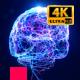 Brain Damage 4K - VideoHive Item for Sale