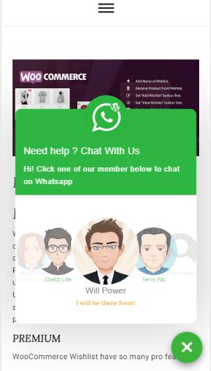 Chat on WhatsApp - WhatsApp chat Plugin for WordPress