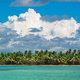 Palm trees on sea shore at beautiful sunny day - PhotoDune Item for Sale