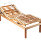 Orthopaedic bed with net and electric controls - PhotoDune Item for Sale