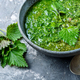 Green nettle soup - PhotoDune Item for Sale