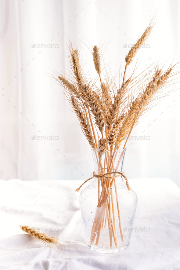 Stalks of organic wheat in vase on white table, copy space - Stock Photo - Images