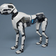 Robot dog stands on a gray background - PhotoDune Item for Sale