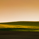 Sunset above the large yellow colza field - PhotoDune Item for Sale