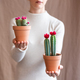 Woman holding a cactus pot - PhotoDune Item for Sale