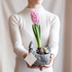Woman holding  hyacinthus orientalis in flower pot. - PhotoDune Item for Sale
