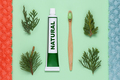 Tube of natural toothpaste and bamboo toothbrush on green background - PhotoDune Item for Sale