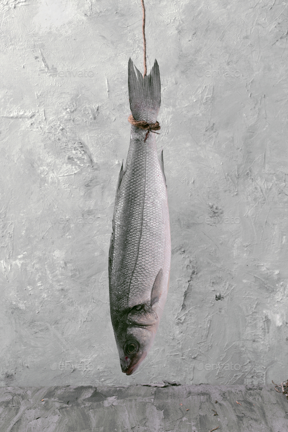 whole seabass hanging on a rope in front of gray marbling background - Stock Photo - Images
