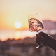 Glass of rose wine in hand with sunset at background - PhotoDune Item for Sale
