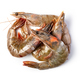 raw shrimp - PhotoDune Item for Sale