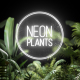 Neon Plants - VideoHive Item for Sale