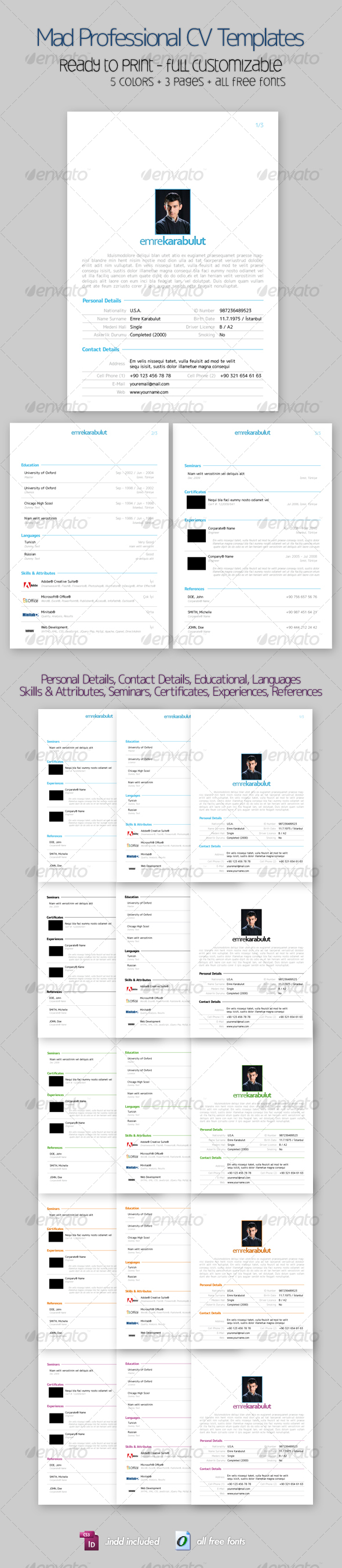 Mad Professional Cv Template with 5 Color, 3 Pages - Miscellaneous Print Templates