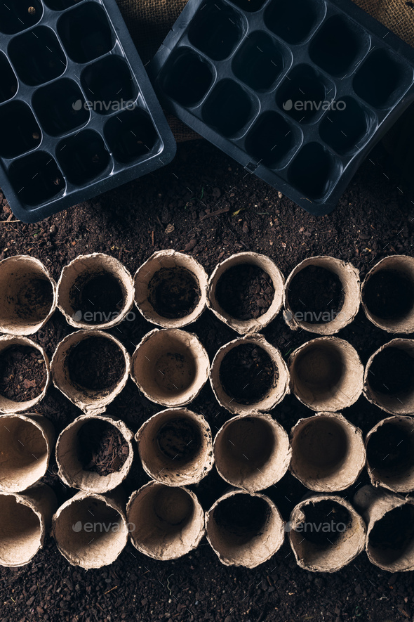 Biodegradable peat pot on greenhouse compost humus soil - Stock Photo - Images