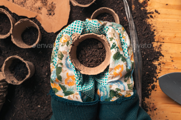 Top view of florist holding soil in flowerpot - Stock Photo - Images