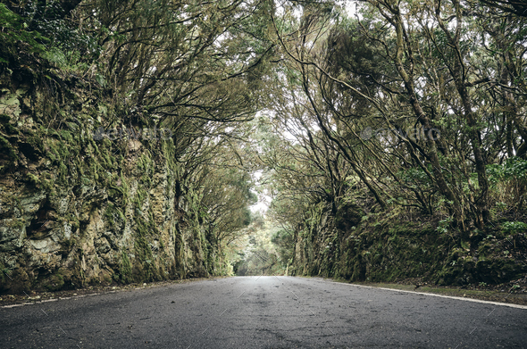 Scenic road in the Anaga UNESCO biosphere reserve, Spain. - Stock Photo - Images