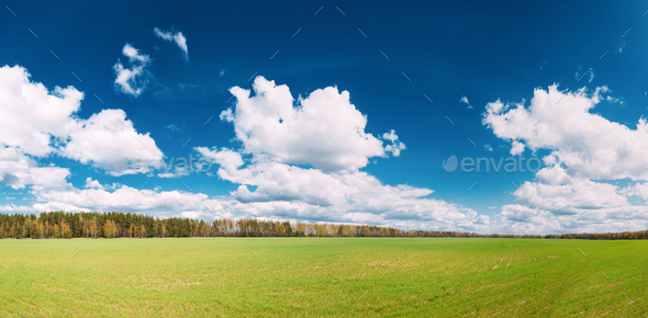 Countryside Rural Field Or Meadow Landscape With Green Grass On - Stock Photo - Images