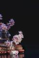 Cherry blossom, sakura flowers in glass jars on a vintage book. Fragile spring bloom still life on a - PhotoDune Item for Sale
