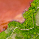 Aerial view of colorful red copper mining waste water in contrast with fresh green forest by drone - PhotoDune Item for Sale