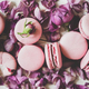 Sweet pink macaron cookies and rose buds and petals, close-up - PhotoDune Item for Sale