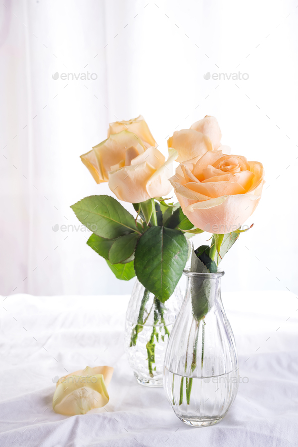 Beautiful fresh cut beige Roses in glass vase on light background. Minimal floral composition for  sc 1 st  Photodune & Beautiful fresh cut beige Roses in glass vase on light background ...