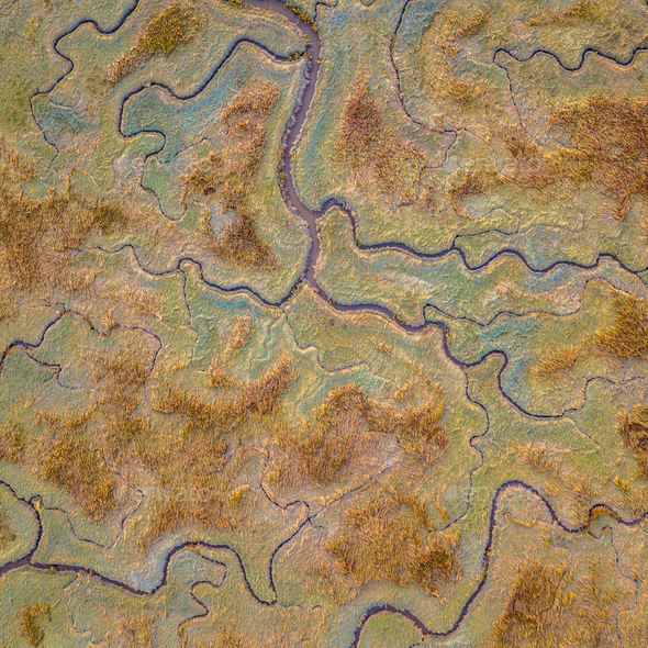 Aerial view of tidal marshland square - Stock Photo - Images