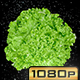 Spinning Lettuce - VideoHive Item for Sale