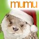 Adorable Christmas Otter