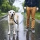 Man with dog in rain - PhotoDune Item for Sale