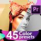 Color Correction & Color Grading Presets for Premiere Pro - VideoHive Item for Sale